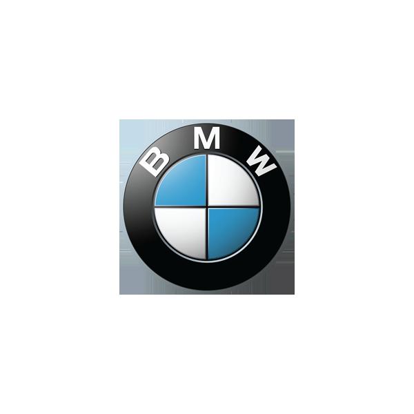 BMW Race Fairing